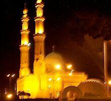 Minarets At Night by Nancy Richard