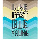 Live Fast by shanin666