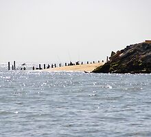 At the edge of the Peninsula - Bay of Arcachon, France. by Tiffany Lenoir