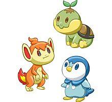 Pokemon Starters - Gen 4 Photographic Print