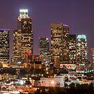 LA Skyline by Radek Hofman