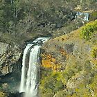Ebor Falls, Top and Bottom :) by peasticks