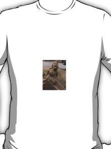 Stone Sculpture of york man T-Shirt
