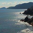 Slea Head by Adrian McGlynn