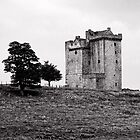 Clackmannan Tower by 242Digital