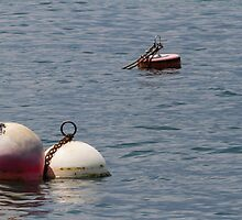 buoy on the lake by spetenfia