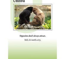 United by Heartland