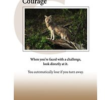 Courage by Heartland