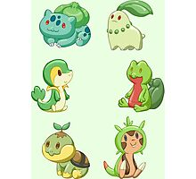Pokemon Starters - Grass Types Photographic Print