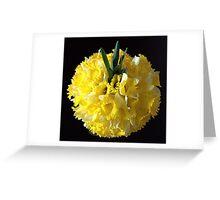 Daffodils ball Greeting Card