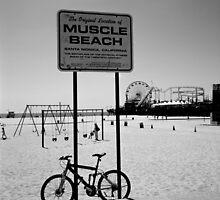 Muscle Beach, Santa Monica by Matthew Walters