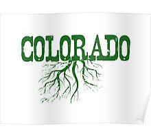 Colorado Roots Poster