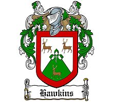 Hawkins (Wexford) by HaroldHeraldry
