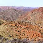 Flinders Ranges - Arkaroola Ridgetops by Georgie Sharp