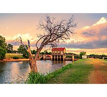 The Tree on the Dam Photographic Print