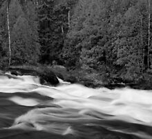 The rapids by photogaet