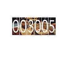 3005 Mileage: Bear Photographic Print