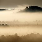 8.9.2014: September Morning III by Petri Volanen