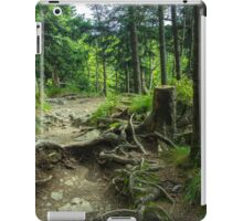 Fairytale Forest - Nature Photography iPad Case/Skin