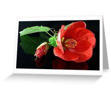 Red Chinese Lantern Greeting Card