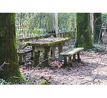 table and stone bench in the woods Photographic Print
