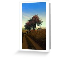 Hiking trail, tree and summer morning | landscape photography Greeting Card