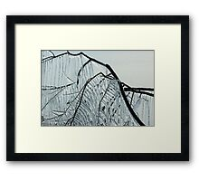 Intricate Ice Curtains Framed Print