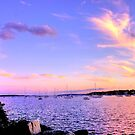 Sunset In Pink by Nancy Richard