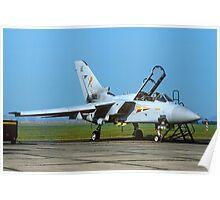 Panavia Tornado F.2T ZD904/AE Poster