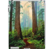 REDWOOD  FOREST iPad Case/Skin