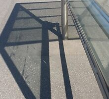 Bus Shelter Shadows  by MIchelle Thompson