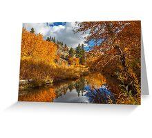 Susan River Reflections Greeting Card