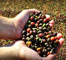 I love coffee by mykosky