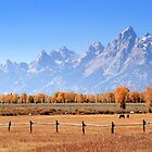 Teton Ranch by Ann  Van Breemen