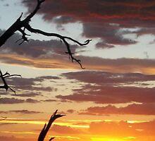 Grand Canyon Sunset by artbycheyenne