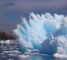 Iceberg Cierva Cove Antarctica by Carole-Anne