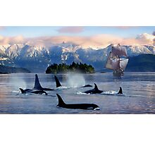 Sail With Sea Wolfs Photographic Print
