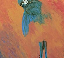 Mysterious Macaw by Margaret Saheed