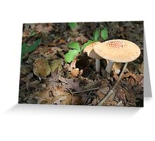mushroom in the forest Greeting Card