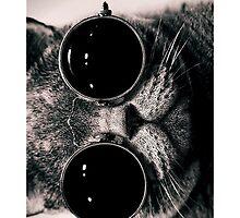 Cool Cat iPhone 5/5s Case by CabeBereumLada
