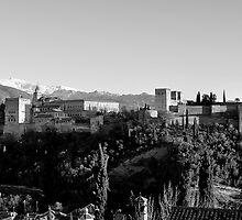 Alhambra black and white by BeatrizGR