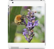 Flying Bumble Bee iPad Case/Skin