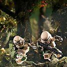 Behind enemy lines by Shobrick