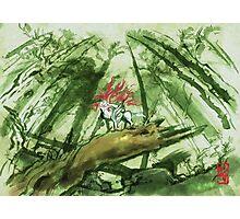 Okami Wallpaper Photographic Print