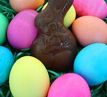 Bunny & Eggs by jmethe