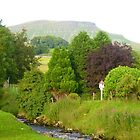 Pen-y-ghent, Yorkshire Dales by SamanthaMirosch