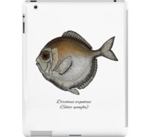 Silver spinyfin iPad Case/Skin