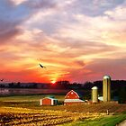 Silos in the Sunset by Nadya Johnson