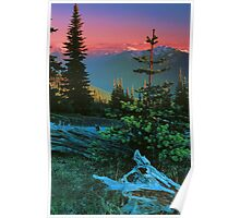 VIEW,OBSTRUCTION POINT Poster