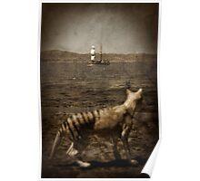Tasmanian tiger and sailing ship Poster